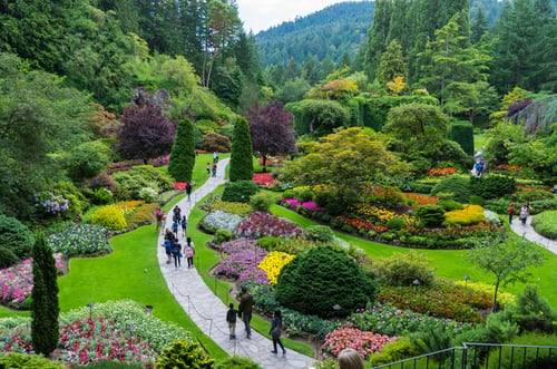 4 Easy Tips for Landscaping on A Budget