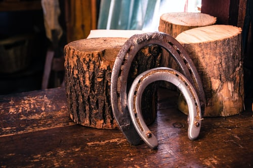 Things to know about buying the nails for horse shoes